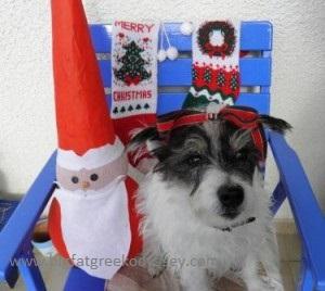 Wallace with santa caption